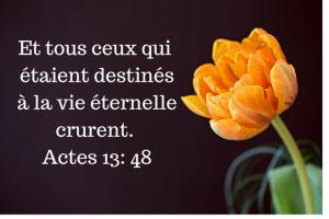 Actes1348